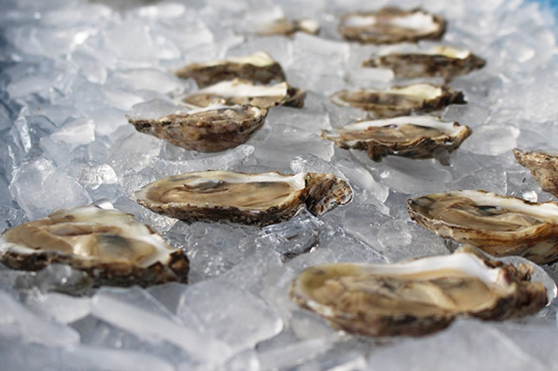 Oyster Recovery Partnership Time Out 2018